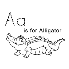 The-for-a-alligator