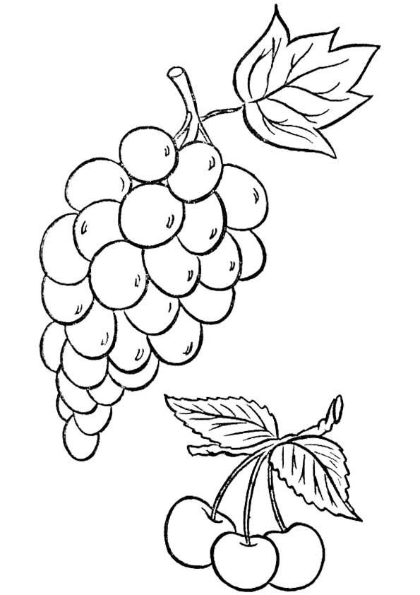 The-full-form-of-grapes-color-page