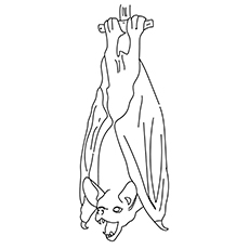 The Hang On Bat coloring pages