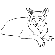 the jungle cat1 - Jungle Junction Coloring Pages