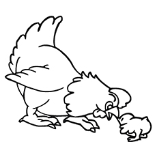 Hen Playing with Chick Printable Coloring Sheet