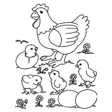 Mother Hen with Four Chicks together to Color