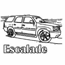 The-muscle-escalade