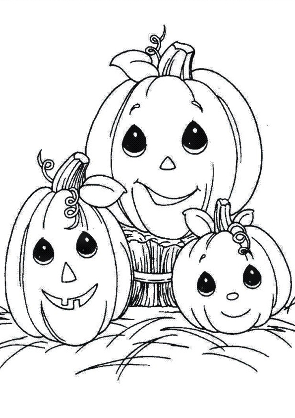 The-pumpkin-family