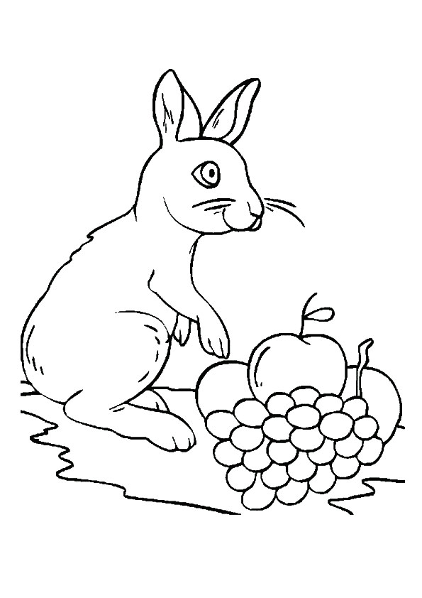 The-rabbit-loves-grapes