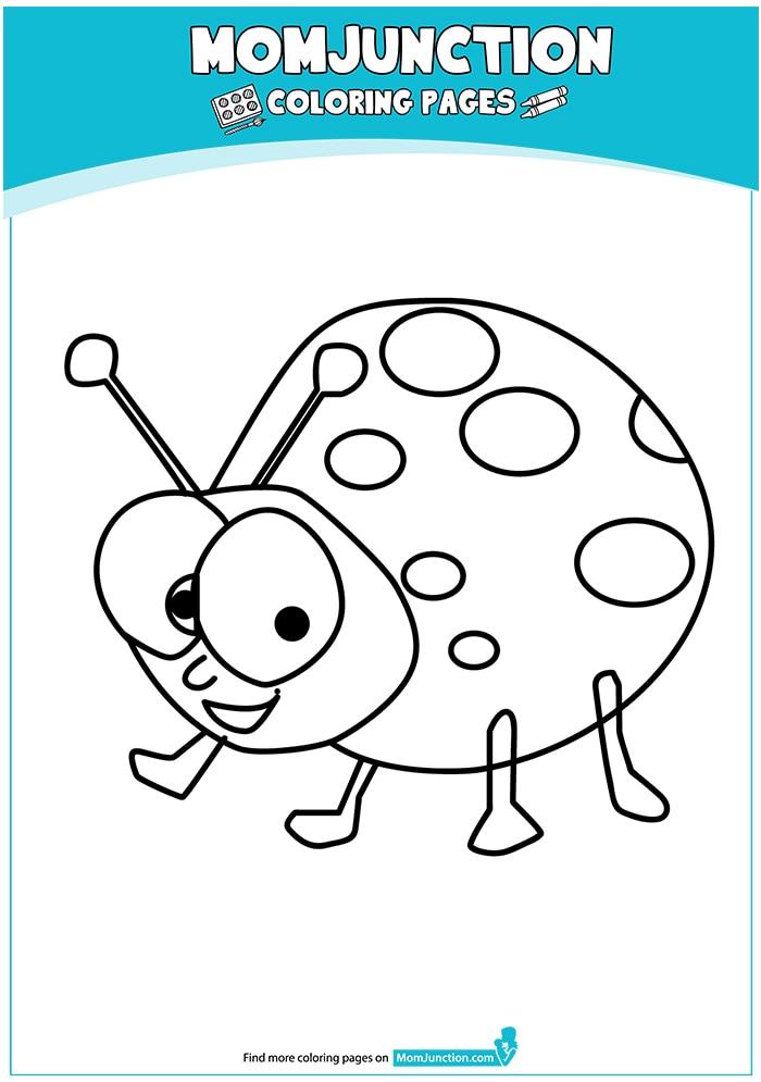 The-smiling-ladybug-16
