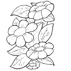 Spring Time is for Flowers Coloring Page Printable