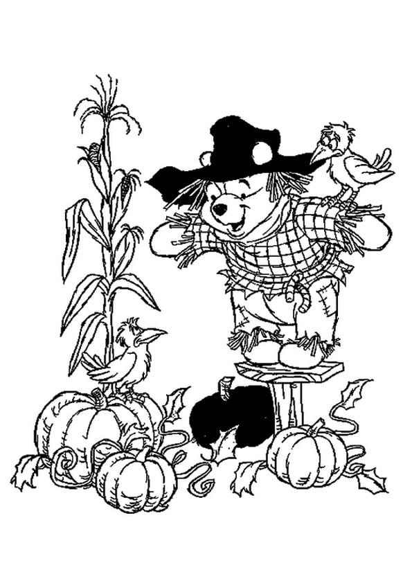 The-winnie-the-scarecrow