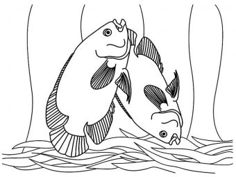 Top 10 Tropical Fish Coloring Pages For Your Toddler