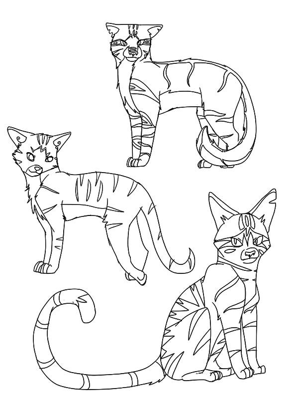 a-Warrior-Cat-Clan