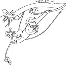 banana-with-monkey-16