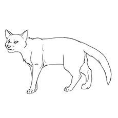 Warrior Cat Clan Fight Lineart 15 By Mireille