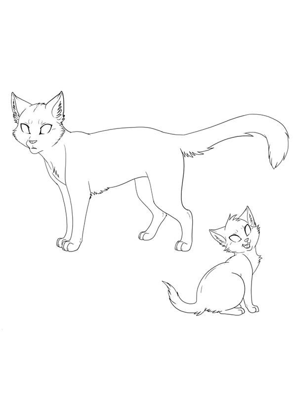 cat_template