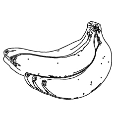 Five Bananas in One Bunch Coloring Pages