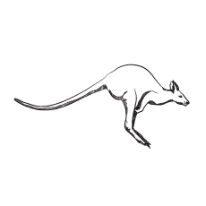 Kangaroo jumping Coloring Pages
