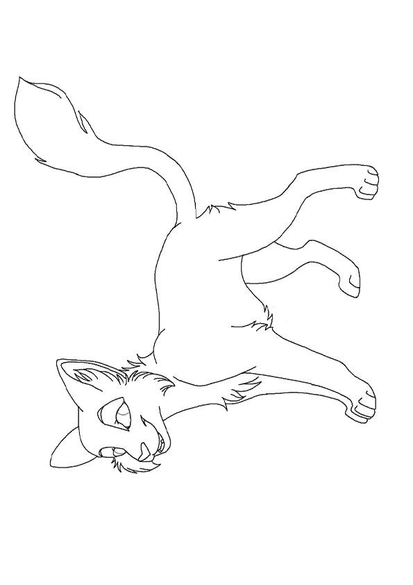 new_cat_ms_paint