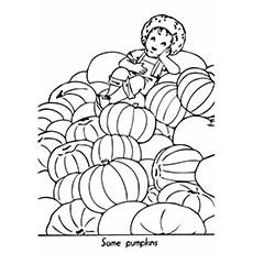 pumpkin-fall