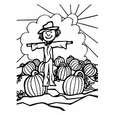 pumpkin-halloween-sun