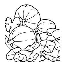 Top 25 Free Printable Pumpkin Patch Coloring Pages Online
