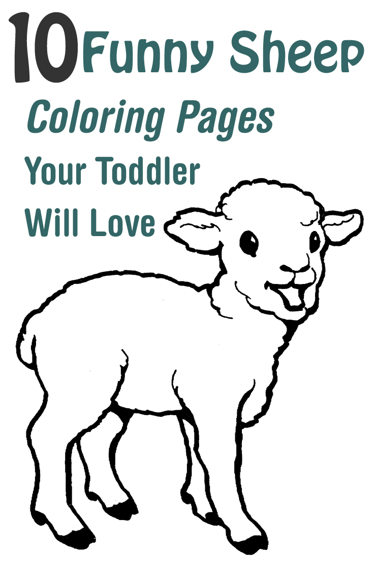 Lamb colouring pages to print - Lamb Colouring Pages To Print 57