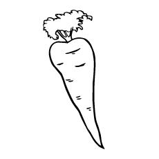 single-carrots