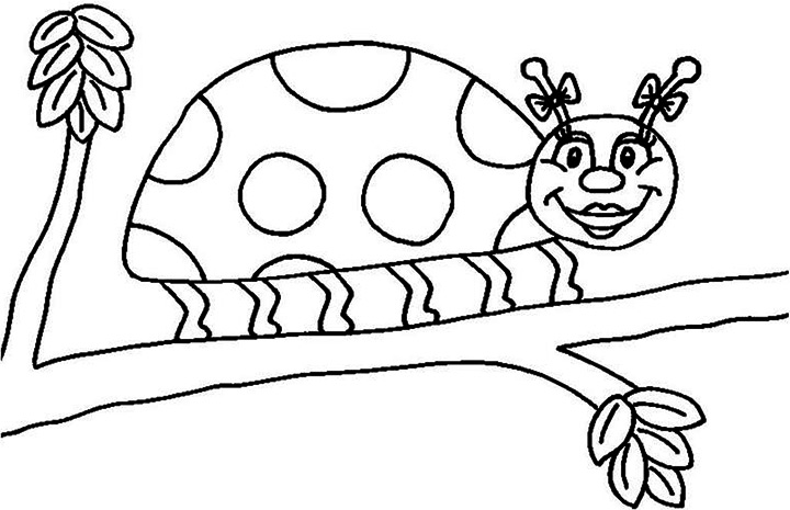 ladybug no spots coloring coloring pages