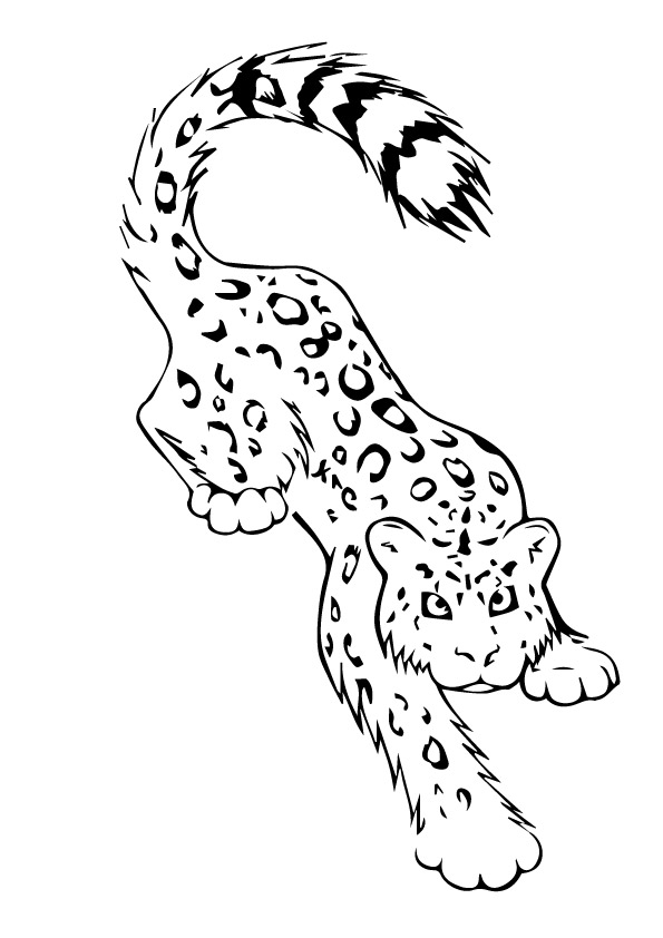 snow-leopard-tatoo-by-crazyitalian