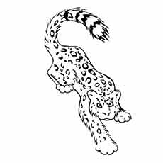 dragoart snow leopard coloring pages - photo#11