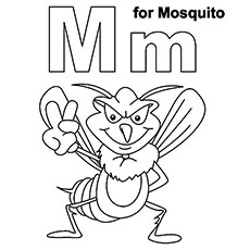 The M For Mosquito