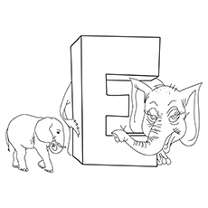 the-e-for-elephant-16