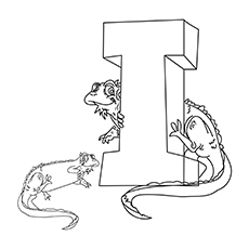 the-i-is-for-iguana-16