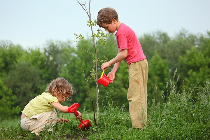 tree planting and gardening