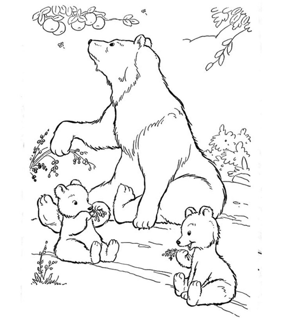coloring pages little bear | Top 10 Free Printable Polar Bear Coloring Pages Online