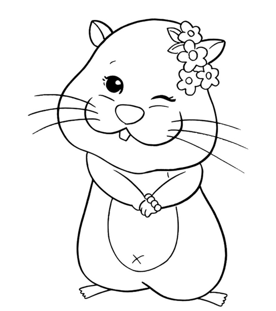 Top 4 Free printable Hamster Coloring Pages Online