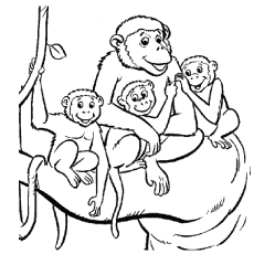 A-Monkeys-Family
