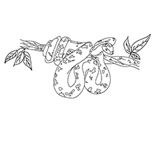A-Snake-Coloring-Pages-fold coloring images
