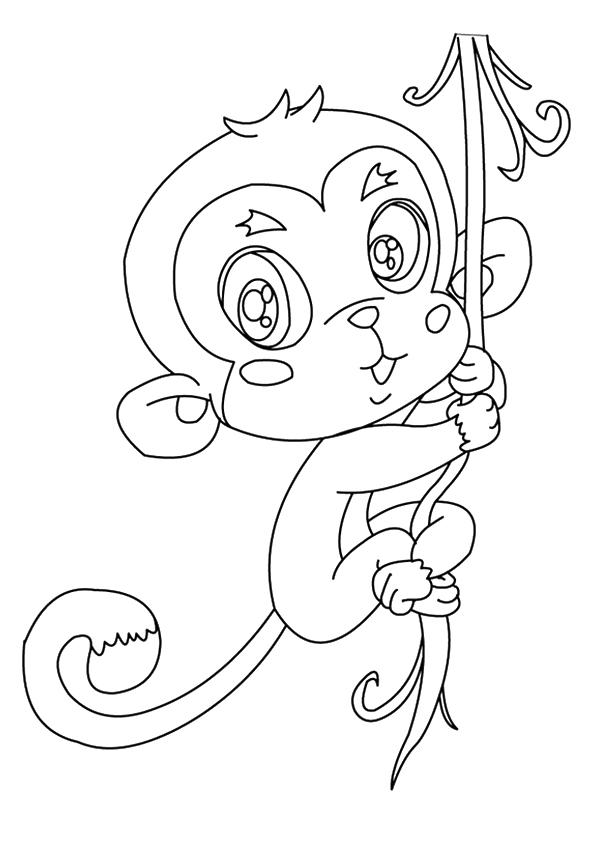 A-Squirrel-Monkeys