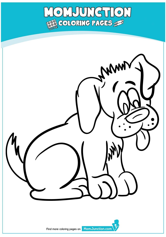 A-hungry-dog