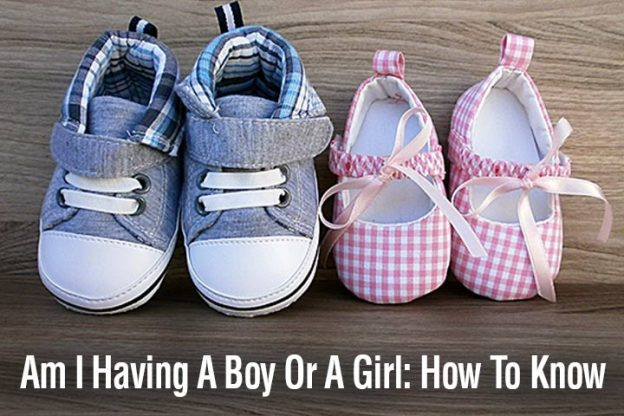 is it a boy or girl scientific methods and fun ways to predict gender
