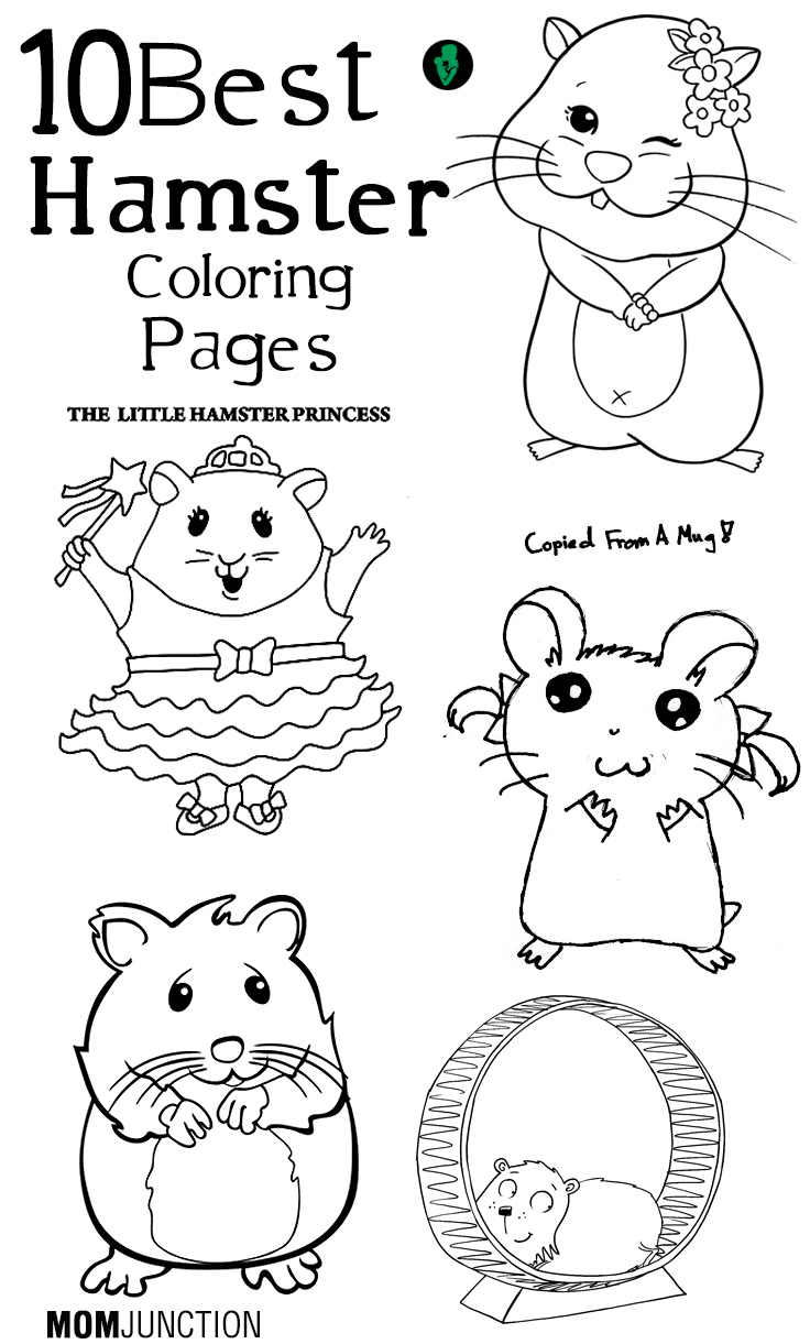Free coloring pages hamsters -