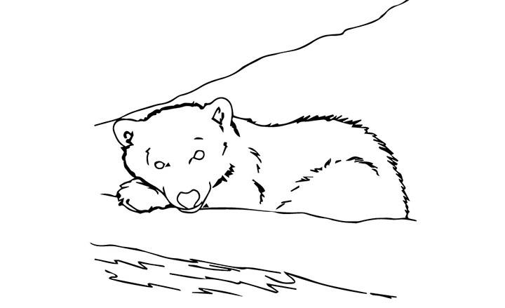 Sleeping Coloring Pages Of Bears In Caves Coloring Pages