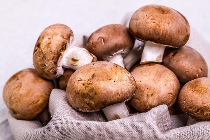 Chestnut mushrooms (Agaricus bisporus)