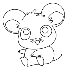 Cute Hamster 17