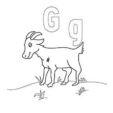 G-Coloring-Pages-gg-16