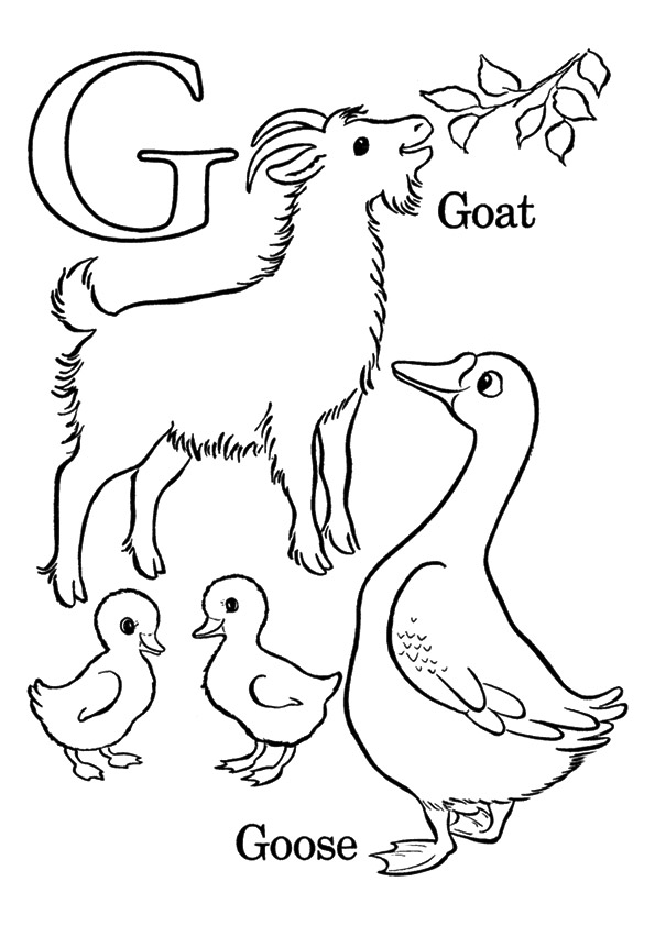 G-Coloring-Pages-gooses