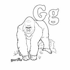 G Coloring Pages Gorilla