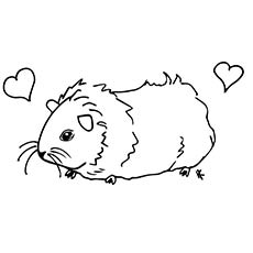 Coloring pages of a guinea pig ~ Top 25 Free Printable Guinea Pig Coloring Pages Online
