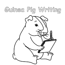 Guinea Pig Writing