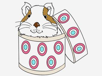 Top 25 Guinea Pig Coloring Pages For Your Toddlers