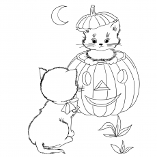 Halloween Whit Cat